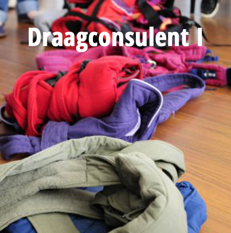 Cursus Draagconsulent I