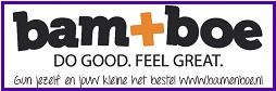 logo_bam+boe+v4